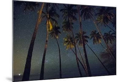 Starry Night in the Kapuaiwa Coconut Grove, Molokai-Jonathan Kingston-Mounted Photographic Print