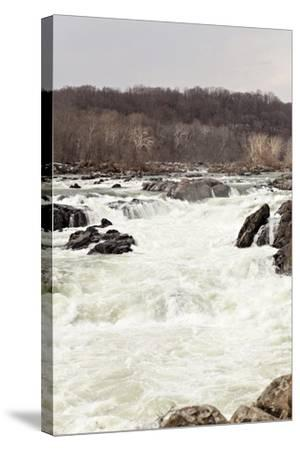 The Fast Moving Waters of the Potomac River Cascade over Boulders-Hannele Lahti-Stretched Canvas Print