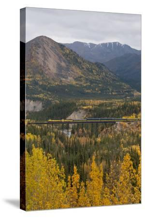 A Train Travels across a Bridge in the Fall in Alaska-Barrett Hedges-Stretched Canvas Print