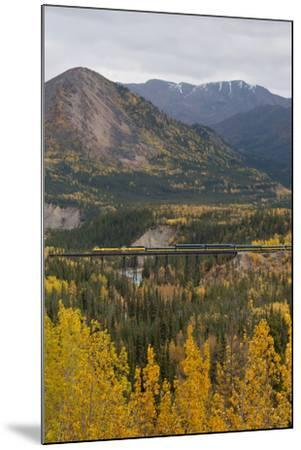 A Train Travels across a Bridge in the Fall in Alaska-Barrett Hedges-Mounted Photographic Print