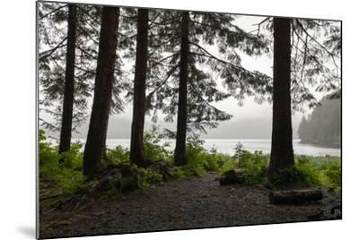 Along a Tree-Lined Trail, a Lookout Offers Views over the Water-Eric Kruszewski-Mounted Photographic Print