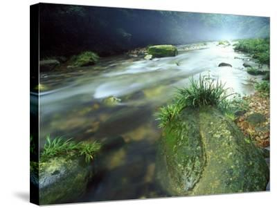 Crystal Clear Water Flows Through the Lush Canyon of Zhangjiajie Forest, China-Keith Ladzinski-Stretched Canvas Print