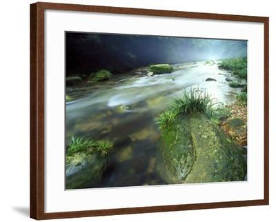 Crystal Clear Water Flows Through the Lush Canyon of Zhangjiajie Forest, China-Keith Ladzinski-Framed Photographic Print