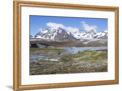 King Penguin, Aptenodytes Patagonicus Rookery and the Cook Glacier-Rich Reid-Framed Photographic Print
