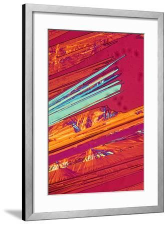 A Photomicrograph, a Picture Taken Through a Microscope, of Benzoic Acid-Cesare Naldi-Framed Premium Photographic Print