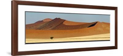View of Red Dunes, Sossusvlei, Namib Desert, Namib-Naukluft National Park, Namibia--Framed Photographic Print