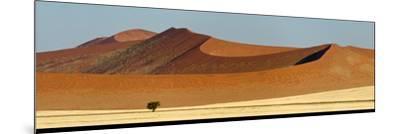 View of Red Dunes, Sossusvlei, Namib Desert, Namib-Naukluft National Park, Namibia--Mounted Photographic Print