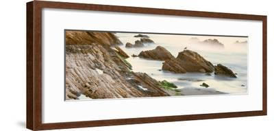 Seagull Perching on the Beach, Gaviota, Santa Barbara County, California, Usa--Framed Photographic Print