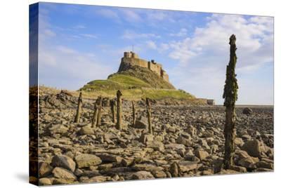 Lindisfarne Castle, Holy Island, Northumberland, England, United Kingdom, Europe-Gary Cook-Stretched Canvas Print