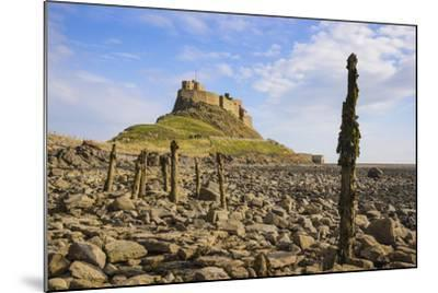 Lindisfarne Castle, Holy Island, Northumberland, England, United Kingdom, Europe-Gary Cook-Mounted Photographic Print