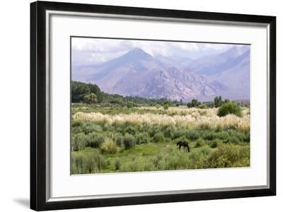 Landscape in the Andes, Argentina-Peter Groenendijk-Framed Photographic Print