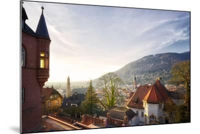 A View over the Misty Old Town of Heidelberg, Baden-Wurttemberg, Germany-Andreas Brandl-Mounted Photographic Print