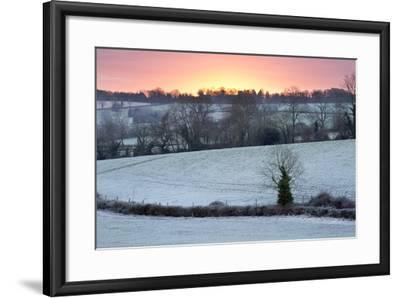 Winter Trees and Fields in Dawn Frost, Stow-On-The-Wold, Gloucestershire, Cotswolds, England, UK-Stuart Black-Framed Photographic Print