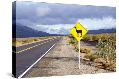 Guanaco Sign, Argentina-Peter Groenendijk-Stretched Canvas Print