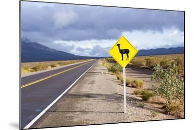 Guanaco Sign, Argentina-Peter Groenendijk-Mounted Photographic Print