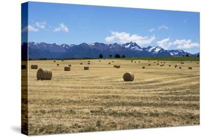 Hay Field in the Landscape, Patagonia, Argentina-Peter Groenendijk-Stretched Canvas Print