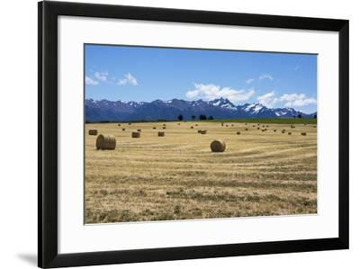 Hay Field in the Landscape, Patagonia, Argentina-Peter Groenendijk-Framed Photographic Print
