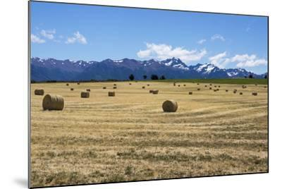 Hay Field in the Landscape, Patagonia, Argentina-Peter Groenendijk-Mounted Photographic Print