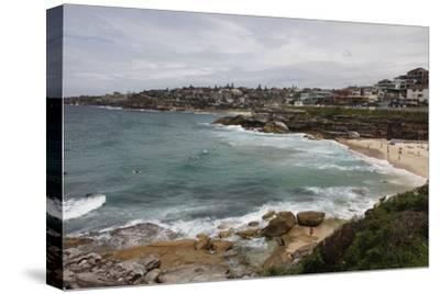 Coastal Path from Bondi Beach to Bronte and Congee, Sydney, New South Wales, Australia, Pacific-Julio Etchart-Stretched Canvas Print