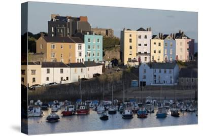 View over Harbour, Tenby, Carmarthen Bay, Pembrokeshire, Wales, United Kingdom, Europe-Stuart Black-Stretched Canvas Print