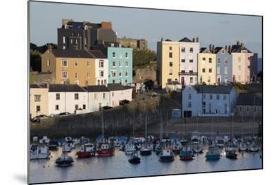 View over Harbour, Tenby, Carmarthen Bay, Pembrokeshire, Wales, United Kingdom, Europe-Stuart Black-Mounted Photographic Print