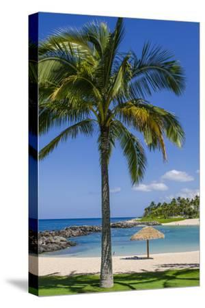 Ko Olina Beach, West Coast, Oahu, Hawaii, United States of America, Pacific-Michael DeFreitas-Stretched Canvas Print
