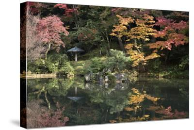 Autumn Colours Reflected in Hisagoike Pond-Stuart Black-Stretched Canvas Print