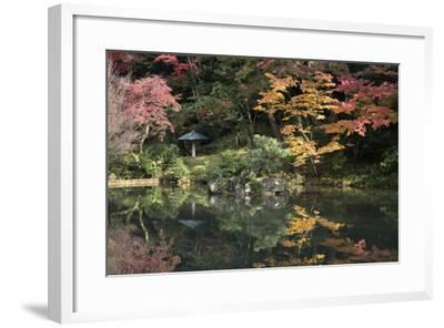 Autumn Colours Reflected in Hisagoike Pond-Stuart Black-Framed Photographic Print