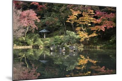 Autumn Colours Reflected in Hisagoike Pond-Stuart Black-Mounted Photographic Print