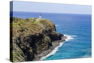 Historic Kilauea Lighthouse on Kilauea Point National Wildlife Refuge-Michael DeFreitas-Stretched Canvas Print