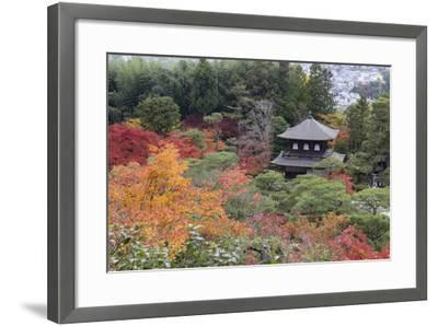 The Silver Pavilion and Gardens in Autumn-Stuart Black-Framed Photographic Print