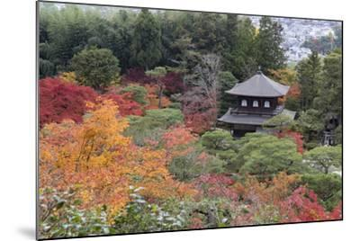 The Silver Pavilion and Gardens in Autumn-Stuart Black-Mounted Photographic Print