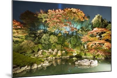 Night Illuminations of Temple Gardens, Shoren-In Temple, Southern Higashiyama, Kyoto, Japan-Stuart Black-Mounted Photographic Print