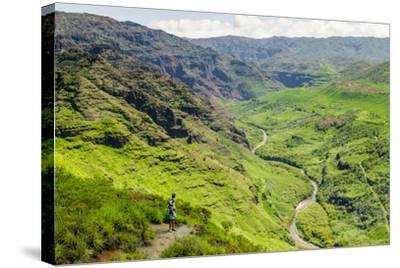 Waimea Canyon State Park, Kauai, Hawaii, United States of America, Pacific-Michael DeFreitas-Stretched Canvas Print