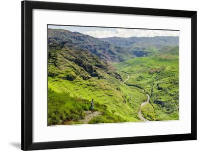 Waimea Canyon State Park, Kauai, Hawaii, United States of America, Pacific-Michael DeFreitas-Framed Photographic Print