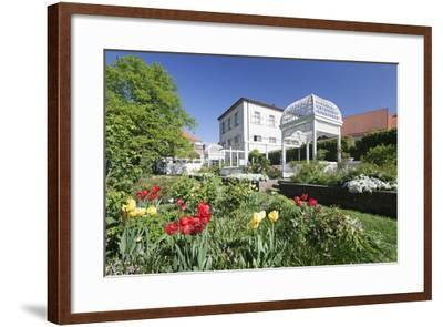 Rosengarten (Rose Garden) in Spring, Ettlingen, Baden-Wurttemberg, Germany, Europe-Markus Lange-Framed Photographic Print