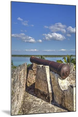 Old Cannon, Ramparts of San Felipe Fort, Built in 1733-Richard Maschmeyer-Mounted Photographic Print