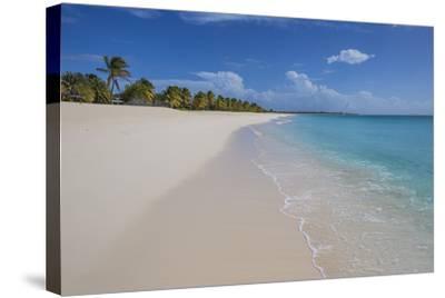 Barbuda, Antigua and Barbuda, Leeward Islands, West Indies-Roberto Moiola-Stretched Canvas Print