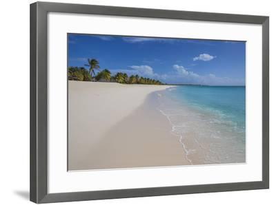 Barbuda, Antigua and Barbuda, Leeward Islands, West Indies-Roberto Moiola-Framed Photographic Print