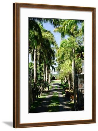 Nevis Botanical Garden, Nevis, St. Kitts and Nevis-Robert Harding-Framed Photographic Print
