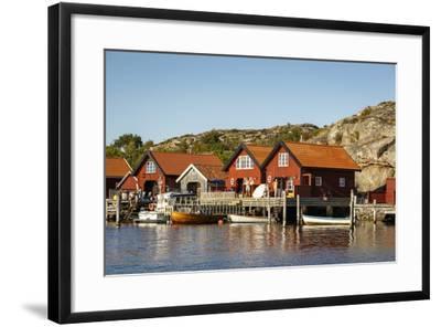 Timber Houses, Grebbestad, Bohuslan Region, West Coast, Sweden, Scandinavia, Europe-Yadid Levy-Framed Photographic Print