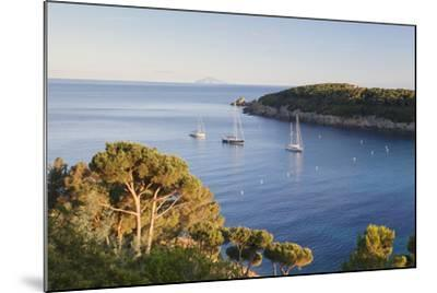 Sailing Boats in the Bay of Fetovaia at Sunset, Island of Elba, Livorno Province, Tuscany, Italy-Markus Lange-Mounted Photographic Print