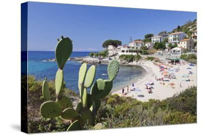 Beach of Seccheto, Island of Elba, Livorno Province, Tuscany, Italy-Markus Lange-Stretched Canvas Print