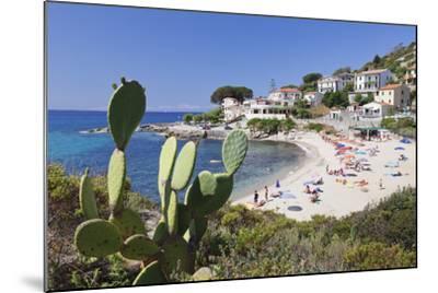 Beach of Seccheto, Island of Elba, Livorno Province, Tuscany, Italy-Markus Lange-Mounted Photographic Print