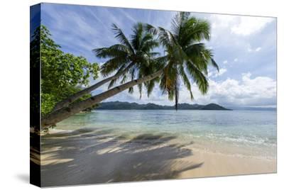 Tropical Island Beach at Matangi Island Resort, Vanua Levu, Fiji, Pacific-Louise Murray-Stretched Canvas Print