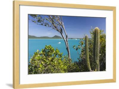 Panoramic View of Spearn Bay from a Hill Overlooking the Quiet Lagoon Visited by Many Sailboats-Roberto Moiola-Framed Photographic Print