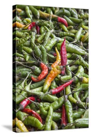 Hot Peppers of Various Color Used as Food in Indian Cuisine-Roberto Moiola-Stretched Canvas Print