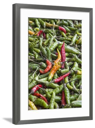 Hot Peppers of Various Color Used as Food in Indian Cuisine-Roberto Moiola-Framed Photographic Print