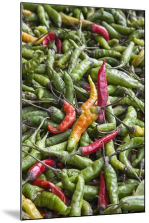 Hot Peppers of Various Color Used as Food in Indian Cuisine-Roberto Moiola-Mounted Photographic Print
