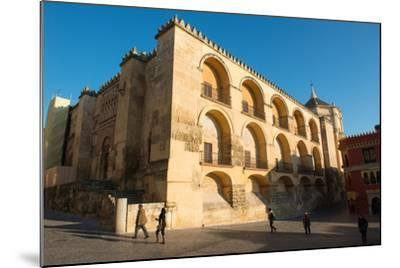 The Mezquita of Cordoba, Andalucia, Spain-Carlo Morucchio-Mounted Photographic Print